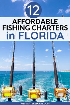 Looking to go deep sea fishing in Florida? Explore the Florida coastline by taking one of these affordable fishing charter trips in Florida. If you are looking for unique things to do in Florida, try one of these fishing charters to make your Florida family vacation memorable. This complete guide will help you book the Florida adventure your entire family will love. #westgateresorts #floridawildlife #floridafishingandwildlife Florida Food, Florida Vacation, Florida Travel, Vacation Villas, Usa Travel, Beach Resorts, Lake Resort, Resort Villa, Florida Coastline