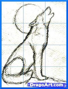 reticolo per lupo