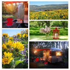Rowena Crest, Oregon...wildflowers Galore! What a cute trailer!