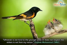 We are told to be kind to our children and to respect our elders!