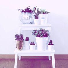 ⇨     Mein erster IKEA Hack ist online! Ich zeige euch 4 Ideen mit einem Hocker  schaut vorbei - ich bin gespannt auf eure Meinung  ||| ✦ ✦ ✦ www.kati-onclouds.de ||| ✦ ✦ ✦ #kationcloudsblog #newblogpost #interior #ikeahack #ikeadeutschland #interiordecor #interiorblogger #blogger #blogged #blogger_de #bloggerbowl #kakteenliebe #myhome #homedecor #homesweethome #homedecoration #instame #instahome