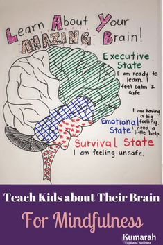 Mindfulness for Kids includes teaching them about how their brain works. Learn how to help kids in the emotional or survival state of their brain to calm down. Teach them mindful practices based on brain science to help them manage emotions! Teaching Mindfulness, Mindfulness For Kids, Mindfulness Activities, Brain Activities, Therapy Activities, Mindfulness Meditation, Social Work Activities, Meditation Kids, Reiki Meditation