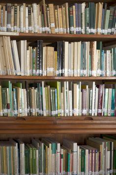 . Fondo librario. Detalle Experimental, Bookcase, Home Decor, Special Library, Zaragoza, Filing Cabinets, Classroom, Decoration Home, Room Decor
