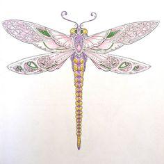 Dragonfly from Enchanted Forest  #colouringbook #coloringbook #adultcoloringbook #livrosdecolorir #arteterapia  #enchantedforest #florestaencantada  #zacarovanyles #carovnyles  #johannabasford #maped #colorpeps #colorindo #coloreando #dragonfly #libelula