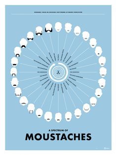 A Spectrum of Moustaches poster Infographic