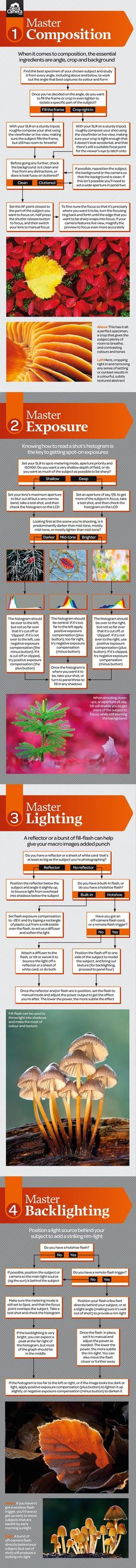 Free macro photography cheat sheet: drag and drop to save to your desktop