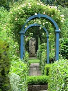 Blue arches for the garden!
