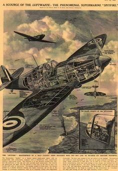 X-Sect  Spitfire