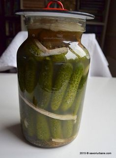 cum se prepara castravetii murati in saramura Canning Pickles, Jacque Pepin, Romanian Food, Canning Recipes, Celery, Cucumber, Cookie Recipes, Goodies, Food And Drink