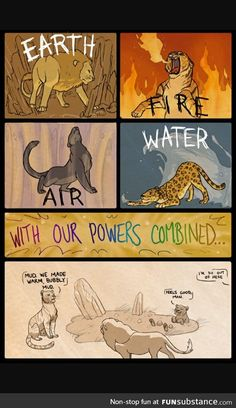 This is Awesome Warrior Cats Animal Jokes, Funny Animal Memes, Funny Animals, Cute Animals, Funny Cute, Haha Funny, Hilarious, Funny Stuff, Random Stuff
