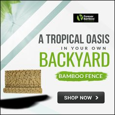 Bamboo Fencing, Fence Panels, Tans, House Ideas, Tropical, Backyard, Island, Create, Natural