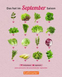 Seasonal calendar September: salad & herbs Saisonkalender September: Salat & Kräuter Season calendar September: what& in season now? Types Of Cereal, September, Food Science, Eat Smart, Health Snacks, Nutrition Program, Eating Plans, Protein, Food And Drink