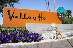 Hotel Review: The Hotel Valley Ho is a pet friendly hotel located in Scottsdale, Arizona. Originally opened in 1956, the Valley Ho was a popular Hollywood ...