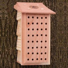 Osmia Lodge Mason Bee House Bee Box Ideas Pinterest