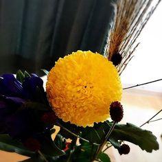 #お月見 #菊 #ピンポンマム  #ピンポンマム可愛い  #ピンポン菊  #丸い菊の花  #満月 #すすき  #ききょう  #秋の花束 Dandelion, Illustration, Flowers, Plants, Illustrations, Flora, Royal Icing Flowers, Dandelions, Floral