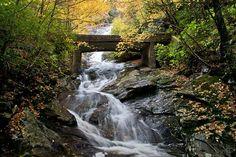 Priamo na hranici TN, Wildcat Falls sa vinie pod starou logovacie ceste. Docela malebné! 5. Cathedral Falls, Blue Ridge Parkway