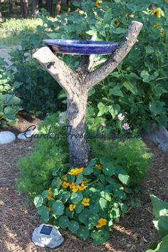 Simple way to make a bird bath.  Probably cheap too!  Find a saucer or platter from home or flea market and a branch.
