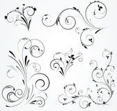 Black And White Flourishes - Download From Over 54 Million High Quality Stock Photos, Images, Vectors. Sign up for FREE today. Image: 7835710