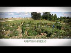 community garden project in Croatia