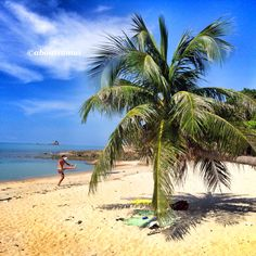 Thong song bay from Aboutsamui.ru