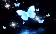 C programming tutorial book Background Hd Wallpaper, Abstract Iphone Wallpaper, Background Images Wallpapers, Rainbow Wallpaper, Wallpaper Backgrounds, Wallpaper Desktop, Cool Wallpapers Butterflies, Butterfly Wallpaper, Most Beautiful Butterfly