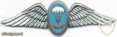 Static Line, Pilot Tattoo, Parachute Regiment, Military Insignia, Defence Force, Paratrooper, African Countries, Special Forces, Armed Forces
