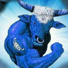 Blue Bull muscle Jack Daniels Bottle, Taurus, Rugby, Moose Art, Blues, Racing, History, Sports, Prints