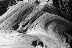 exploration of the fluidity of wood in ancient tree forms on the island of Crete Resin Art, Monochrome, Crete, Behance, Wood, Photography, Diy, Ideas, Photograph
