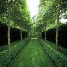 La simetría en jardinería