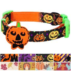 Just in! Blueberry Pet 8 P... Click here http://costumes-etailer.myshopify.com/products/blueberry-pet-8-patterns-fall-halloween-spirit-collection-designer-dog-collar-with-decoration?utm_campaign=social_autopilot&utm_source=pin&utm_medium=pin