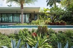 Touring Six Fabulous Private Gardens Across Miami Beach - The Great Outdoors - Curbed Miami
