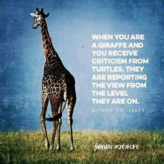 """""""When you are a giraffe and you receive criticism from turtles, they are reporting the view from the level they are on."""" -Bishop T. Quotable Quotes, Wisdom Quotes, True Quotes, Great Quotes, Bible Quotes, Words Quotes, Wise Words, Faith Quotes, Mantra"""