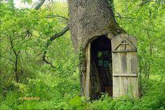 Oak Chapel in Serbia