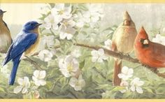 Colorful Birds Wallpaper Border, at Borders To Go