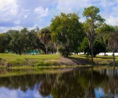 Enjoy the best of Florida with a beautiful home at The Reserve at Fairway Oaks, located in the Imperial Lakes country club community in Mulberry, Florida (South Lakeland area).  Click to learn more about the community, which features lakefront and conservation homesites!