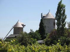 Découvrez la vie du meunier aux Moulins d'Ardenay à Chaudefonds sur Layon. Visites sur rendez-vous au 02 41 78 67 97. #moulins #loirelayon #jaimelanjou #loirepower