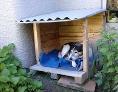 #AnimalPalletHouse, #DogHouse, #DogLounger, #Doghouse, #Garden, #RecyclingWoodPallets My dog kept curling up in this little dirt area in a shady area of the house. I decided to make him this quick and easy Pallet Doghouse Lounger so he'd be more comfortable, dry and still able to see around his yard. This doghouse is a simple,
