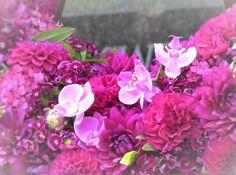 Orchideen und pinke Blüten, Kranz auf einem Grab, Melaten - Foto: S. Hopp