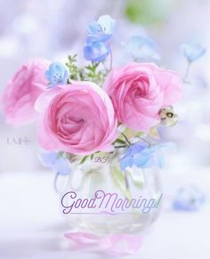 Good Morning Beautiful Flowers, Good Morning Images Flowers, Beautiful Roses, Photo Bouquet, Summer Wallpaper, Good Morning Greetings, Pink Peonies, Land Scape, Photo Art