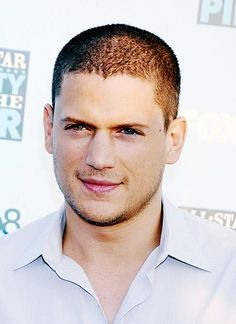 Wentworthmiller 1 18 Wentworth Miller Photo 45
