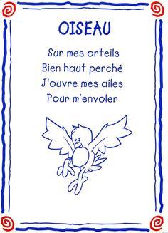 oiseau conseil