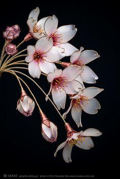 Japanese hair accessory. Floral Hair Ornaments. - Cherry Blossom. Kanzashi - by Sakae, Japan: