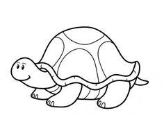 żółw kolorowanka - Szukaj w Google