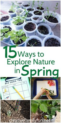 Spring is a great time to explore nature with your kids. Here are 15 activities to help you examine plants, get in the garden, and watch for birds and other wildlife.