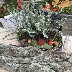 Christmas Wreaths, Holiday Decor, Fall, Outdoor Decor, Home Decor, Autumn, Decoration Home, Fall Season, Room Decor