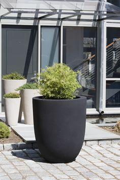 Modern Grey Round Planters | Dream Garden | Pinterest | Planters ... Soma Blumenkubel Wiid Design Bilder
