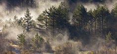 The mist of the morning - The mist of the morning. National park of Ordesa y Monte Perdido. Pyrenees. Spain.
