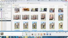 Using Picasa to Edit Pictures