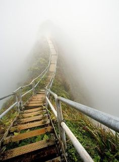 """Stairway to Heaven (Hawaii); Photo by Matthew Cook """"Haiku Trail on Oahu, HI. This is a very fun and challenging hike in the mountains of Oahu, Hawaii. It is constantly raining and socked in with cloud cover, so this shot was rather challenging to obtain. Oh The Places You'll Go, Places To Travel, Places To Visit, Stairway To Heaven, Magic Places, To Infinity And Beyond, Oahu Hawaii, Honolulu Oahu, Visit Hawaii"""