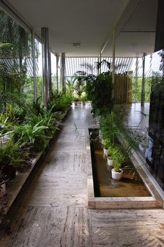 DG Arquitecto Valencia: Google+